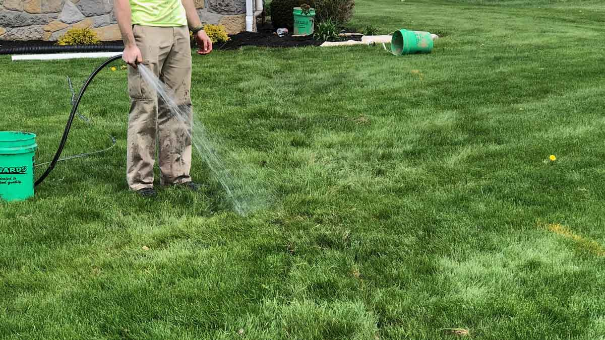 your yard's health and maintenance